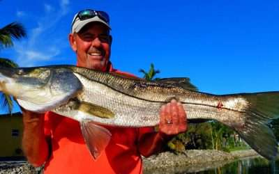 South Florida Freshwater Snook Fishing Charters with Local Experts