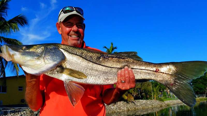 Freshwater Snook Fishing Charters